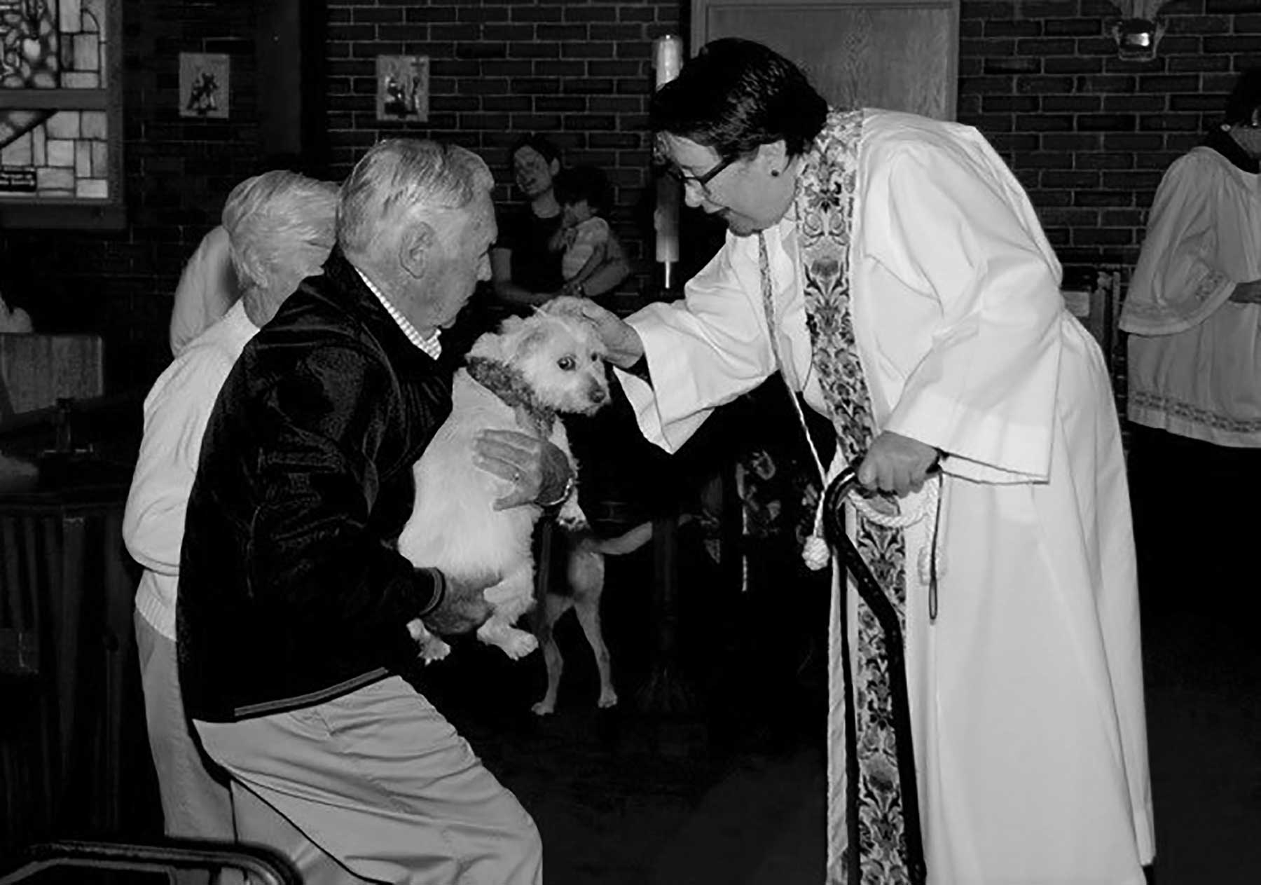 The Church of the Good Shepherd Welcomes Director of Music, Announces the Blessing of the Animals