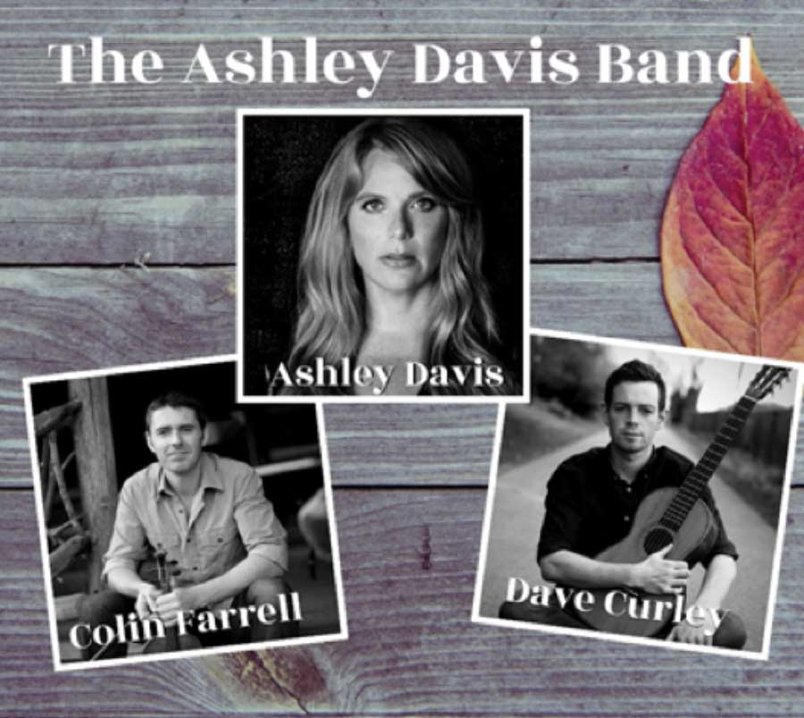 Traditional Irish Music Concert With The Ashley Davis Band